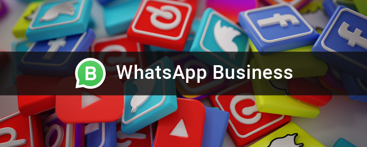 Whats App Business Guide